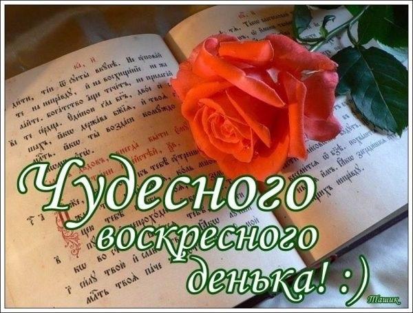 Красивые открытки с добрым утром в воскресенье012