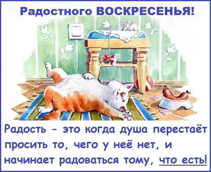 Красивые открытки с добрым утром в воскресенье019