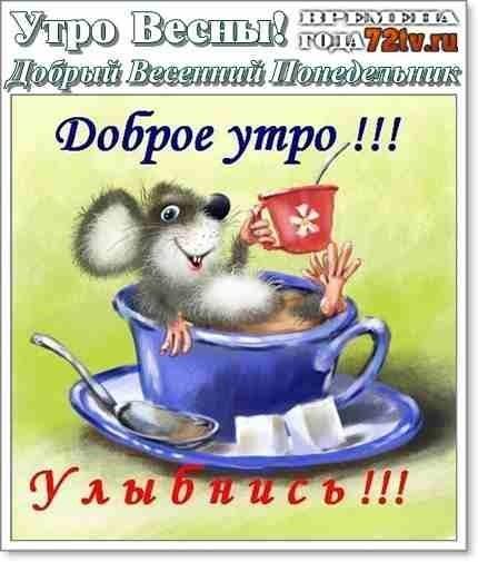 Красивые открытки с добрым утром в понедельник005