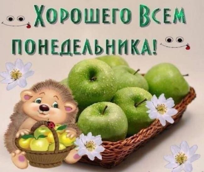 Красивые открытки с добрым утром в понедельник018