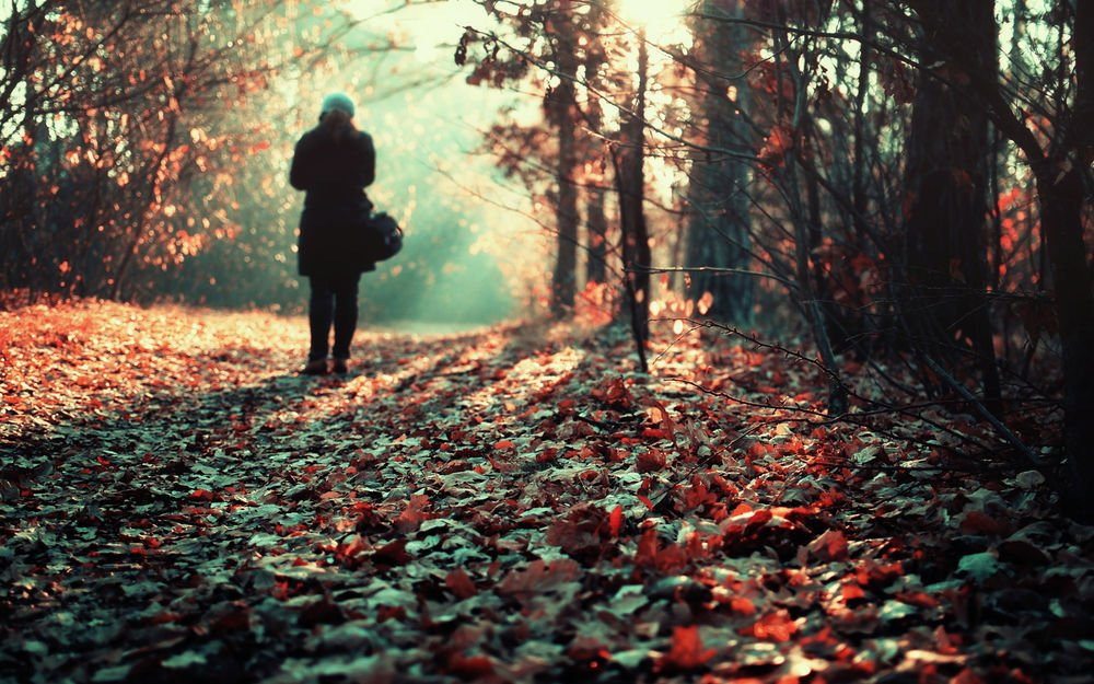 Красивые фото девушек в осеннем лесу - подборка (9)