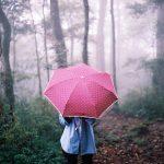 Красивые фото девушек осенью со спины с зонтом
