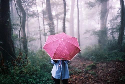 Красивые фото девушек осенью со спины с зонтом (21)