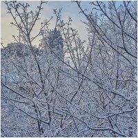Красивые фото зимнего вида из окна007