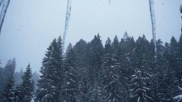 Красивые фото зимнего вида из окна009