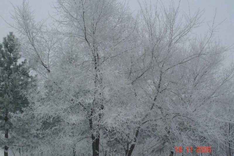 Красивые фото зимнего вида из окна014