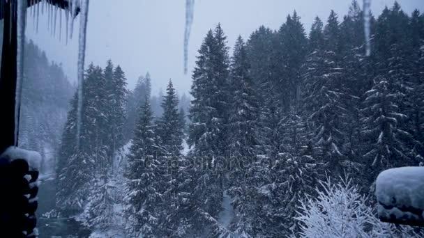 Красивые фото зимнего вида из окна017