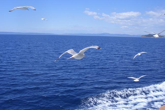 Красивые фото и картинки на всемирный день моря (4)