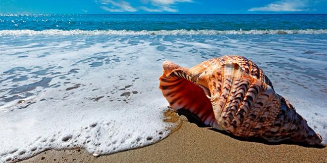 Красивые фото и картинки на всемирный день моря (5)