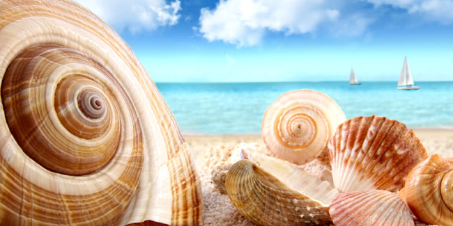 Красивые фото и картинки на всемирный день моря (7)