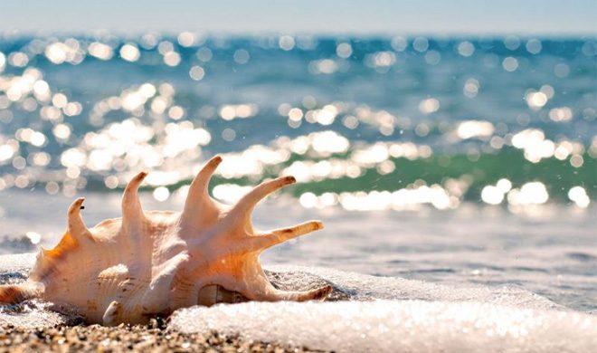 Красивые фото и картинки на всемирный день моря (9)