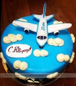 Красивый торт с рисунком самолета003