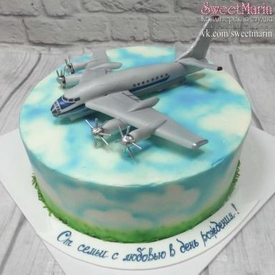 Красивый торт с рисунком самолета006
