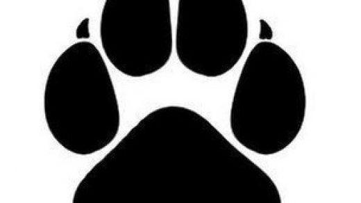 Красивый трафарет лапки собаки (1)