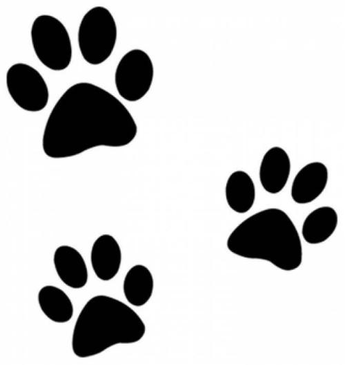 Красивый трафарет лапки собаки (3)