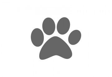 Красивый трафарет лапки собаки (6)