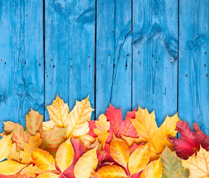 Красивый фон на рабочий стол осень на весь экран (20)