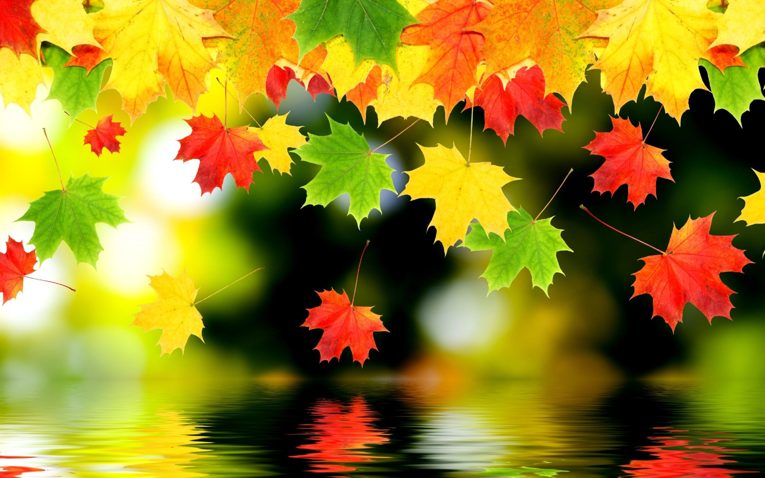 Красивый фон на рабочий стол осень на весь экран (3)