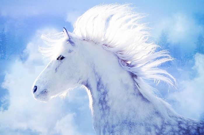 Лошади картинки волшебные005