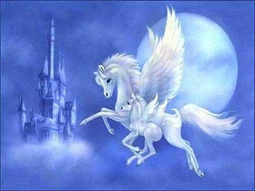 Лошади картинки волшебные016