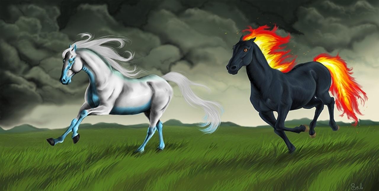 Лошади картинки волшебные017