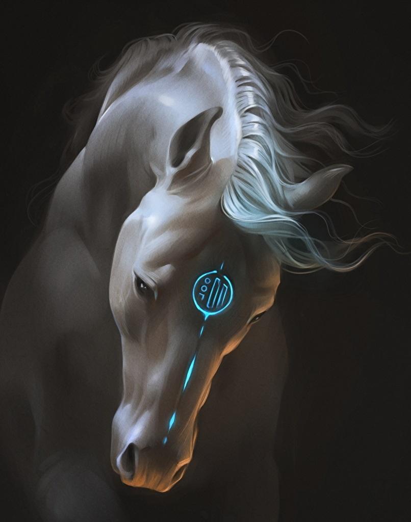 Лошади картинки волшебные022