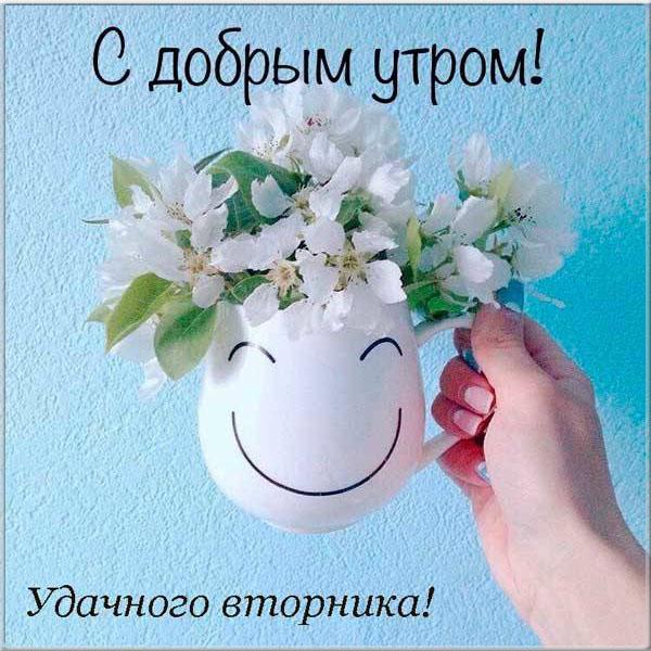 Милые картинки с добрым утром во вторник   30 открыток (1)