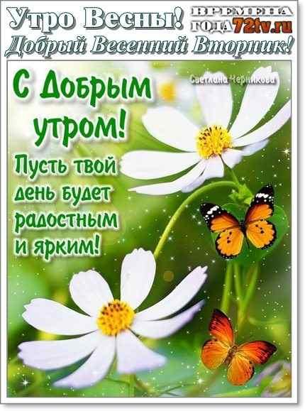 Милые картинки с добрым утром во вторник - 30 открыток (20)