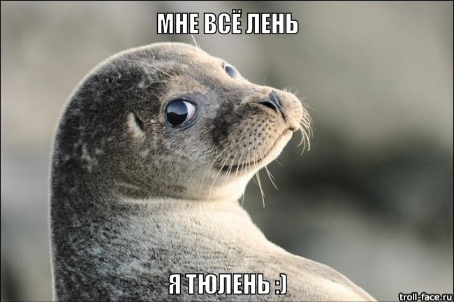Мне все лень я тюлень прикольные фото016