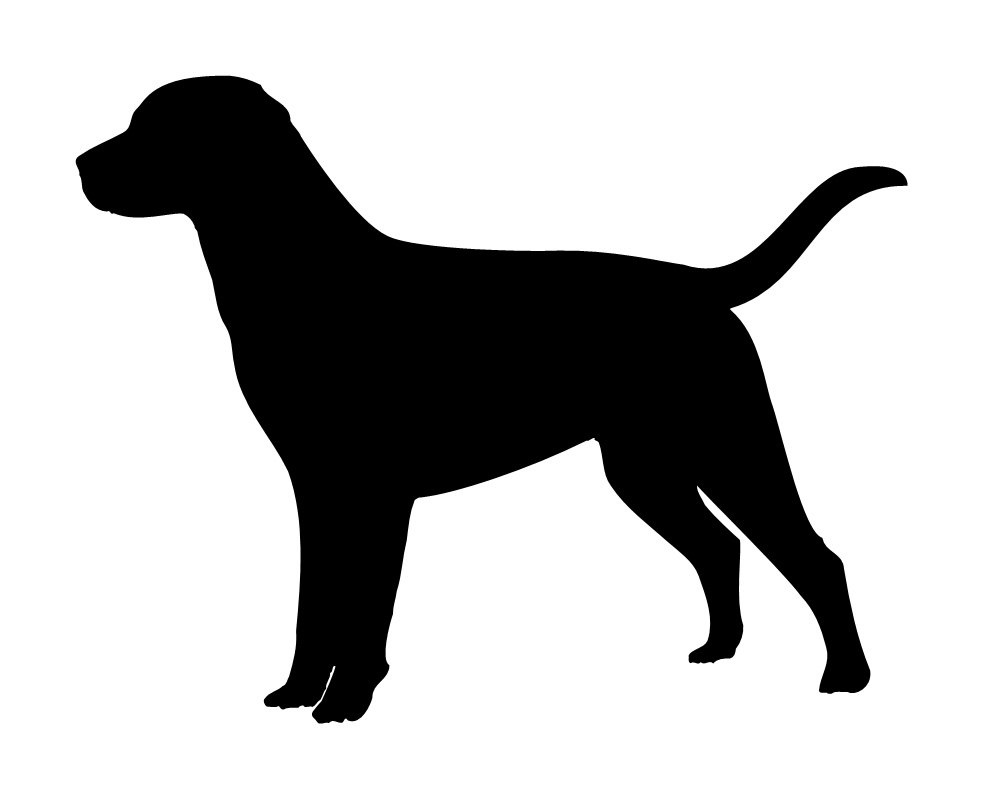 Морда собаки трафарет картинки016