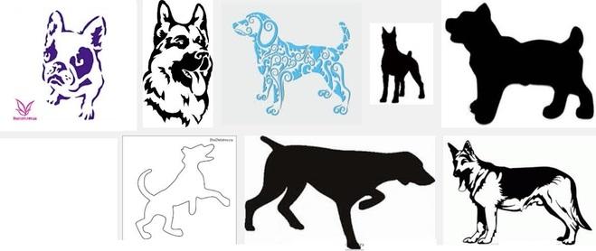Морда собаки трафарет картинки019