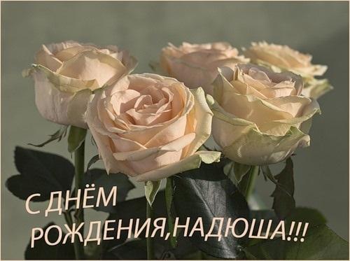 Надюша с днем рождения картинки стихи016