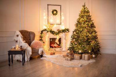 Новогоднее оформление фотостудий   лучшие фото (11)