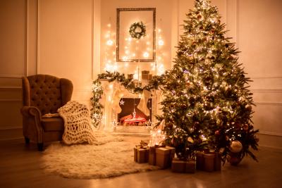 Новогоднее оформление фотостудий   лучшие фото (7)