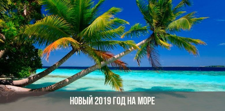 Новый год на море картинки и фото014