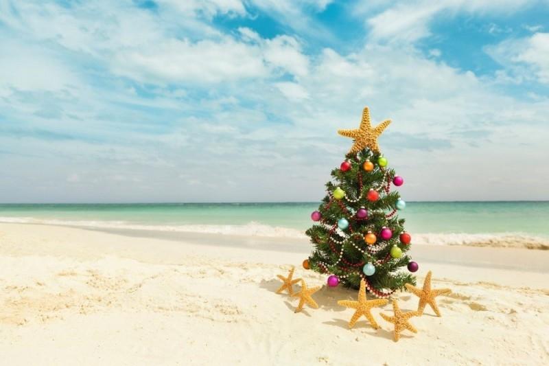 Новый год на море картинки и фото023