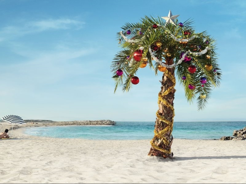 Новый год на море картинки и фото028