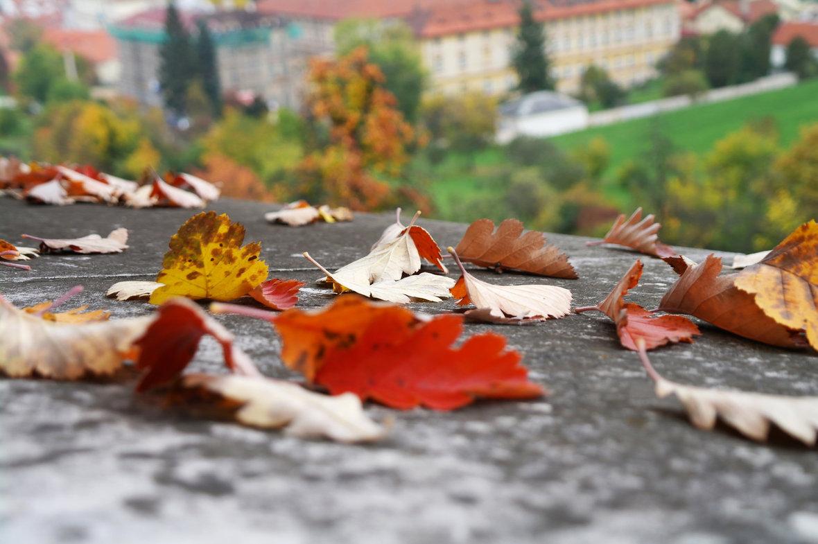 Октябрь картинки на рабочий очень красивые (2)