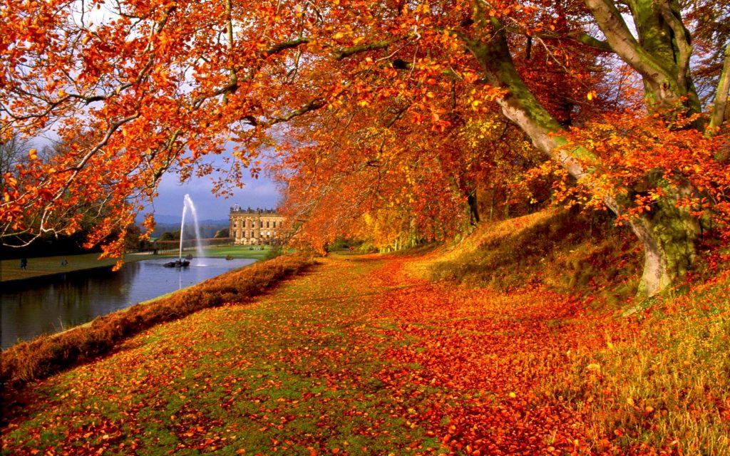 Октябрь картинки на рабочий очень красивые (7)