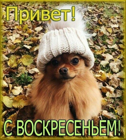 Осеннее воскресенье картинки и фото001