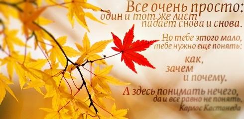 Осеннее воскресенье картинки и фото002