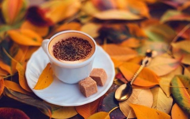Осенние листья и кофе картинки красивые и милые009