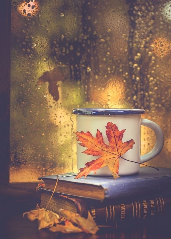 Осенние листья и кофе картинки красивые и милые010