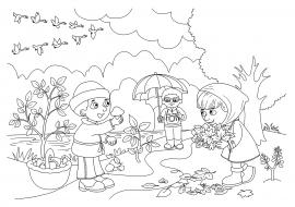Осенний лес с грибами картинки для детей (11)