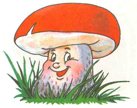 Осенний лес с грибами картинки для детей (13)
