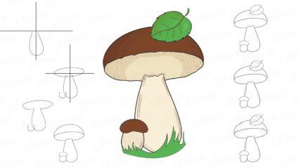 Осенний лес с грибами картинки для детей (17)