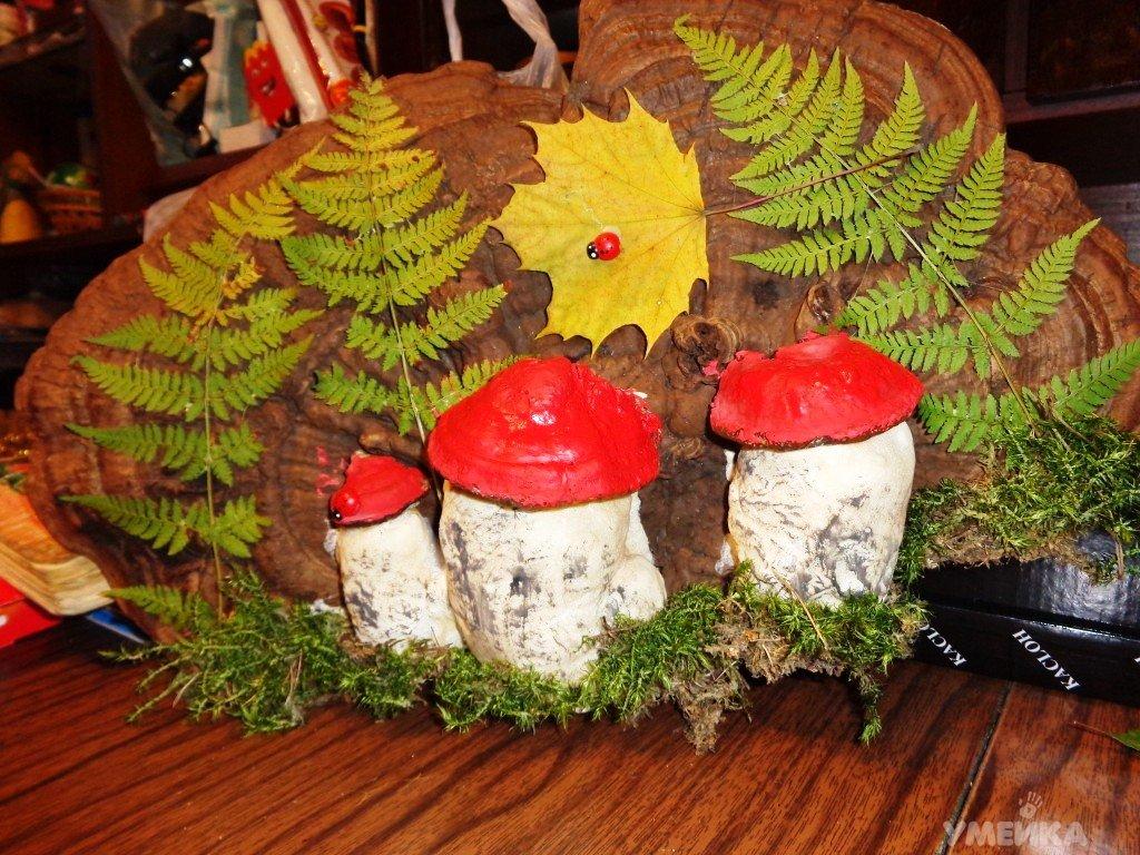 Осенний лес с грибами картинки для детей (19)