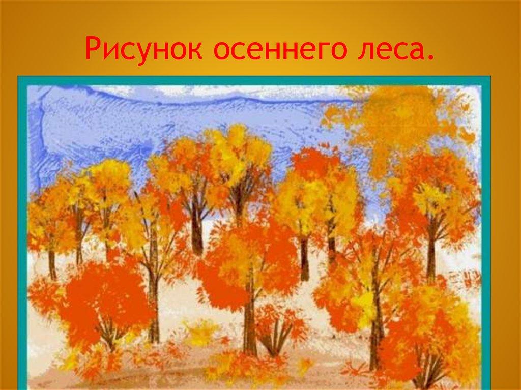 Осенний лес с грибами картинки для детей (21)