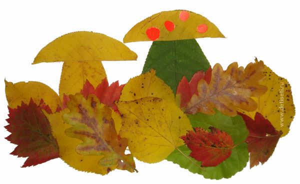 Осенний лес с грибами картинки для детей (6)