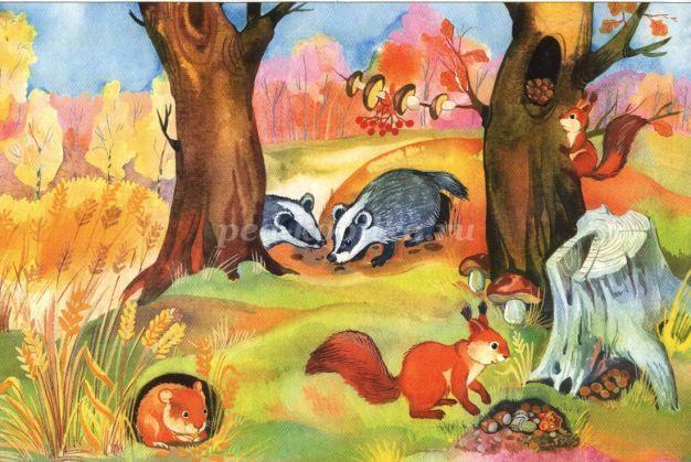 Осенний лес с грибами картинки для детей (7)